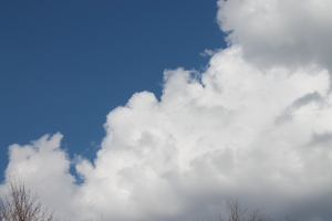 cloudywarmbeautifuldayapril 004
