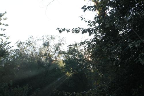 autumnsignssept242013 025