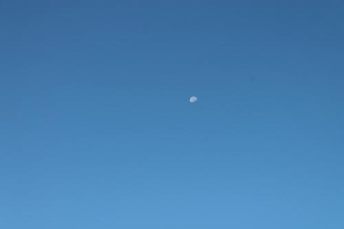 autumnsignssept242013 029